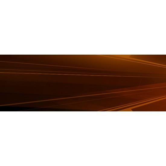 (USED) Thief - PlayStation 4 (USED)
