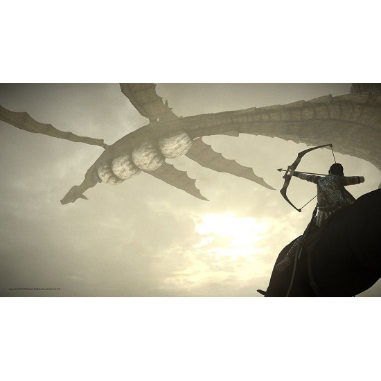 Shadow of the Colossus (Region2) - PS4